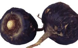 schwarzes-maca